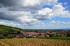Obernai (Philippe Haumesser Photographies (+ 6000 000 view)) Tags: arbres sky nuages clouds village vignes vineyards vignoble vine vines basrhin 67 alsace elsass france nikond7000 d7000 nikon reflex 2018 arbre ciel collines hills obernai