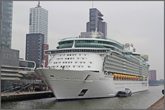 Independence of the Seas in Rotterdam - 29/08/2018 (wrblokzijl) Tags: independenceoftheseas independenceots cruiseship cruiseschip royalcaribbean kreuzfartschiff cruiseliner oceanliner cruise naviredecroisière paquebot boat ship 遊輪 круизное судно crucero nave crociera croisière navire cruzeiro krydstogtskib κρουαζιερόπλοιο cruiseskip risteilyalus 游轮 kryssningsfartyg クルーズ船 rotterdam port kryssningsfartyget bateaudecroisière nlrtm wilhelminakade cruiseport