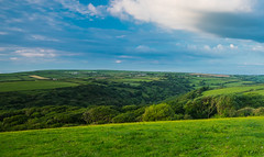 Minster woods at Dusk (Geordie_Snapper) Tags: canon1635mm canon5d4 cornwall june landscape minsterwood summer sunny england unitedkingdom gb