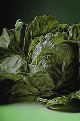 Green Salat (Only photoshoot, don't be afraid) Tags: macroopname sla green salat