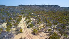 Aerial view of a dirt road in the bush, Cunene Province, Oncocua, Angola (Eric Lafforgue) Tags: above adventure aerialview africa angola angola180792 baobabtree beautyinnature bush colourimage cuneneprovince day developingcountries dirtroad dronepointofview elevatedview fauna horizontal journey landscape majestic nature nopeople nonurbanscene oncocua ongagoa outdoors portuguesecolony ruralscene southernafrica tourism travel tree ao