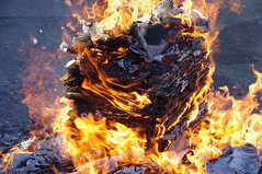 Burn Away (runslikethewind83) Tags: fire hot flame burn japan asia tokyo pentax tradition burning 火 正月 燃え 燃 熱い 日本 東京 new year newyear 2018 january 1月 伝統 文化 アジア asian japanese ペンタックス action haneda 羽田 大田区 ota