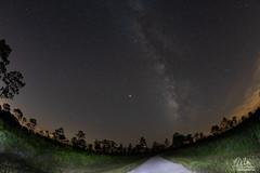 Florida Milky Way (Michael Seeley) Tags: astrophotography bullcreek florida mikeseeley milkyway nightsky nightphotography osceola