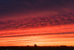 (CarolienCadoni..) Tags: sony sonyilcaa99m2 sal2470z red sundown sunset sun light clouds sky
