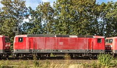 16_2018_09_17_Wuppertal_Zoologischer_Garten_6155_195_MEG_704_mit_Lokzug_6143_852-2 (ruhrpott.sprinter) Tags: ruhrpott sprinter deutschland germany allmangne nrw ruhrgebiet gelsenkirchen lokomotive locomotives eisenbahn railroad rail zug train reisezug passenger güter cargo freight fret wuppertal zoologischer garten db meg 61551951meg704 12184679meg305 61425858 61438522 61439470 61435726 61431220 61435635 61439173 61433499 61431808 61432897 61435767 61431717 61432210 61431261 61431345 61432566 61431550 61431568 0402 5403 6101 6111 6146 schrottzug schrottloks leverkusen opladen bender logo natur outddor