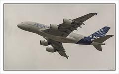 Le premier Airbus A-380 (The first Airbus A-380) (Francis =Photography=) Tags: avion airplane ebene grosporteur longcourrier airbus airbusindustrie europe europa a380 airliner verkehrsflugzeug 2015 lebourget paris quadriréacteur