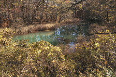 DSC_0204 (juor2) Tags: d750 nikon scene travel japan fukushima aizuwakamatsu lake pond maple autumn scenery volcano colorful