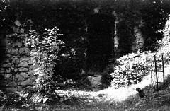 August 2018. Korzkiew Castle, the LO-FI part. Camera: BEIRETTE 35 (yerzmyey) Tags: lofi lowtek korzkiew castle yerzmyey beirette 35 film camera bw black white