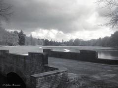 De Berlagebrug in het Nationale Park De Hoge Veluwe. (Rudike) Tags: gelderland holland jachthuissinthubertus berlagebrug berlage dehogeveluwe hogeveluwe