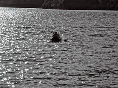 Todo un placer (Luicabe) Tags: agua airelibre barca blancoynegro cabello enamorado exterior gente hombre humanol lago luicabe luis masculino monocromático naturaleza paisaje persona remo yarat1 zamora zoom ngc