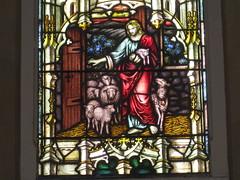 The Vignette of the Jesus as the Good Shepherd Stained Glass Window; St Mark the Evangelist Church of England - George Street, Fitzroy (raaen99) Tags: jesus thegoodshepherd jesusthegoodshepherd shepherd sheep crook malesaint saint bible biblical newtestament gospels johnsgospel iesushominumsalvator allegory allegorical symbol symbolism halo brooksrobinsonandcompany brooksrobinsoncompany brooksrobinsonstainedglass brooksrobinsoncompanystainedglass brooksrobinsonandcompanystainedglass stainedglass 20thcenturystainedglass twentiethcenturystainedglass leadlight leadlightglass 1920s 20s stmarktheevangelist stmarks stmarksfitzroy stmarksanglican churchofengland anglicanchurch anglican fitzroychurch fitzroy georgest georgestreet church placeofworship religion religiousbuilding religious melbourne melbournearchitecture gothicarchitecture gothicrevivalarchitecture gothicrevivalchurch gothicchurch gothicbuilding gothicrevivalbuilding gothicstyle gothicrevivalstyle architecture building window stainedglasswindow gothic gothicdetail lancet lancetwindow