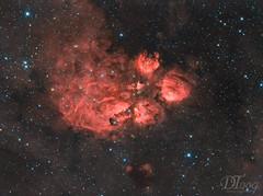 Cat's Paw Nebula - NGC 6334 (Delberson Tiago) Tags: astronomy astrophotography astrofoto astrofotografia astronomia astrophoto amateur nasa qhy qhy163m optolong oriontelescopes milkyway nightsky nebulae night nebulosa nebula nature universe universo cosmos ceuprofundo dso deepsky halpha