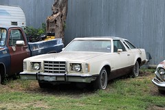 1979 Ford Thunderbird in Dodd City Texas (depotdude07) Tags: doddcitytexas ford fordthunderbird car automobile autos antiqueauto classicautomobile