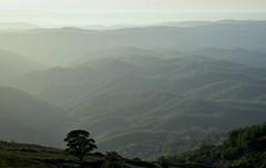 In der Serra de Monchique; Algarve, Portugal (4) (Chironius) Tags: algarve portugal landschaft monchique wasserspiegel himmel sky ciel cielo hemel небо gökyüzü закат dämmerung dusk schemering crépuscule crepuscolo abend evening abends