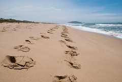 Together (Mariene Valesan) Tags: florianopolis campeche beach brasil brazil ilhadamagia island sand footprint travelphotography travelphoto travel nature naturelovers naturephotography natureshot