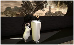 Best Friends (Loegan Magic) Tags: secondlife lowlands jian mice mouse milk glass window lighthouse tree trees view cute humor