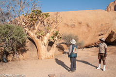 2018-09-04_090832.jpg (Adrian Berry from Ratley) Tags: best 201808namibia