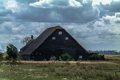 Old thatched roof farm and attached barn with half hipped tile roof (1900). (Eduard van Bergen) Tags: water river biesbosch brabant strand beach blue green holland dutch netherlands niederlande pays bas open dikes land field trees wind vista landscape treeline woods meadow outdoor sky light dijken horizon sony ilce alpha werkendam clouds windy grass fields sun plant polder ditch sloot watergang eolus tree park waterway reed houses road farm barn family farmer life living black tiles half hipped roof thatched antique old vintage rural wolfskap ancestors