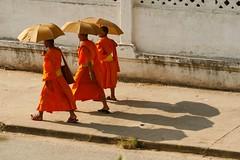 Monks_08 (DepictingPhotos) Tags: asia lao monks umbrellas