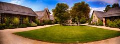 Anglų lietuvių žodynas. Žodis yard grass reiškia kieme žolė lietuviškai.