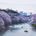 Chidorigafuchi Moat Sakura - Tokyo, Japan