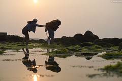 新北市・石門 ∣ Shimen・New Taipei City (Iyhon Chiu) Tags: shimen 石門 石門洞 綠石槽 laomei green sunset couple reef taiwan newtaipeicity 台北 新北市 台灣 風景 自然 nature landscape 海岸 北海岸 coast sea beach