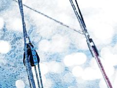 Lines in the Sun (SGarriott) Tags: sgarriott scottgarriott olympus em5ii omd 40150mmf28 sailing sail lines blocks equipment rope rigging sun sunny water summer nautical sparkle seiling norge norway texture
