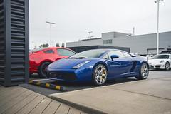 6 speed Lamborghini Gallardo (Dylan King Photography) Tags: porsche 911 991 997 996 993 964 930 944 9912 carrera turbo targa rally langley center lamborghini gallardo 6 speed manual bmw z8 m4 160e evo 2316 bc canada m3