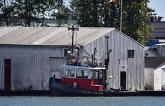 Tron tugboat (D70) Tags: northarm fraserriver britishcolumbia canada tron tugboat nikon d750 150600mm f563 ƒ63 6041mm 1640 220 sigma 150 600mm f5 63 dg os hsm contemporary