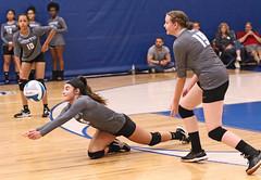 IMG_1838 (SJH Foto) Tags: girls high school volleyball teens team east stroudsburg varsity dig bump dive burst mode action shot
