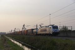 Metrans 386 031-9 met volbeladen containertrein over de Betuweroute bij Valburg richting Emmerich 22-08-2018 (marcelwijers) Tags: metrans 386 0319 met volbeladen containertrein over de betuweroute bij valburg richting emmerich 22082018 betuwe route 031 nederland gelderland niederlande netherlands paysbas 91 54 7386 czmt bombardier 35520 traxx f140 ms2e ms