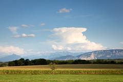 Août (S. Torres) Tags: summer été august août campagne paysage landscape montblanc montagne mountain paysdegex france
