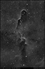 IC1396, Elephant Trunk Nebula in Hydrogen-Alpha (Andries Cafmeyer Astrophotography) Tags: ic1396 sh2131 elephanttrunk emission nebula hydrogen hydrogenalpha ha celestron cgx skywatcher explorer 150pds 750mm zwo asi 183mm pro asi183mm asi183mmpro efw 736mm baader mpcc startravel 80mm asi120mm 120mm sequence generator sequencegeneratorpro sgp phd phd2 pixinsight photoshop astrometrydotnet:id=nova2772791 astrometrydotnet:status=solved