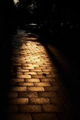 Sunset Boulevard (iamunclefester) Tags: münchen munich sunset goldenhour golden hour orange cobblestone atmosphere