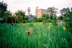 181200-R1-029-13 (elsuperbob) Tags: detroit michigan abandoned emptyspaces playground forgotten overgrown olympusxa fujiflm superiaxtra400 fujifilmsuperiaxtra400