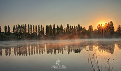 The Maffins Pond in Combourg (Sylvie Nenan) Tags: combourg pond etang bretagne brittany water gre tree arbre verdure country countryscape landscape paysage sun sunset sunrise landscapesdreams ngc