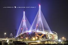 PUENTE DE LA CONSTITUCIÓN (José Mª Arroyo) Tags: puentedelaconstitución puentedelapepa puente cádiz puertoreal ingeniería bahíadecádiz nocturnas largaexposición jm arroyo jabkdos