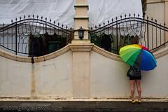 Little India photowalk May '18 (knowenoughhappy) Tags: little india photowalk street singapore may 2018 streets raining