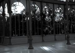 Let the dance begin .... (can imagine? ) (Raquel Borrrero) Tags: palaciodecristal madrid spain españa crystalpalace light trees luz byn blackandwhite blancetnoir blancoynegro wb árbol edificio