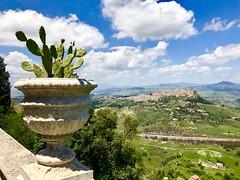 The real Sicily (davidemauro) Tags: sicilia fico dindia enna calascibetta panorama