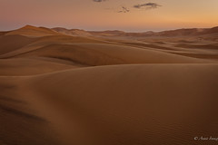 In the desert (Ana Isabel Iranzo) Tags: desert sunset namibia canon anais iranzo