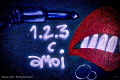 _DSC4030 (Pascal Rey Photographies) Tags: streetart arturbain artcontemporain artgraphique artabstrait artconceptuel graffitis graffs graffiti graffittis lafabrique locauxrock valence26000 valléedurhône rhônevalley rhônealpes auvergnerhônealpes france sorrygraffiti sprayart spray stencil tags