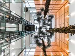 MAK06879_2018_03_17_1-30 Sek. bei f - 5,0_8 mm_ISO 320 (Markus Kolar braucht kein Photoshop...aber Licht) Tags: 2018 architektur dez donaueinkaufszentrum fotoblosn pentaxk70 projekt httpmarkuskolarblogspotde