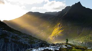 Lofoten wilderness