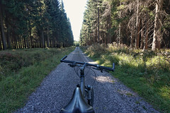 So many beautiful miles through the Krkonose mountains... (beyondhue) Tags: krkonose mountains czech republic park beyondhue cycle cycling bike tree woods forest spruce travel path road