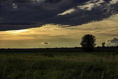 Arrêt obligatoire (Pierre-Luc G.) Tags: nikon nikond810 nikonfullframe d810 tamronsp70200mmf28divcusd tamron70200mmf28 tamron70200mm tamron 70200mmf28 70200mm 70200 zoom paysage paysageduquébec paysageducanada paysagedelamauricie mauricie landscape landscapeofcanada quebeclandscape sunsetlandscape sunset canadianlandscape québec quebec inexplore