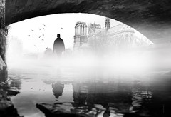 Notre Dame de Paris (Fabdub) Tags: fog eau parisien paris shadow monochrome noiretblanc blackwhite minimalism streetphotography street laseine notredamedeparis leicaq leica urban explored exterieur absoluteblackandwhite