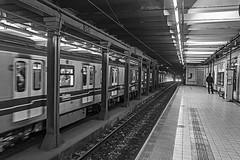 The subway is coming. (Wal Wsg) Tags: thesubwayiscoming elsubteestállegando elsubte subway subte subteargentino subtelineaa subtelineaaestacionriodejaneiro estacionriodejaneiro subtes subways subterraneo subterraneos argentina buenosaires caba capitalfederal ciudaddebuenosaires caballito phwalwsg photography photo foto fotografia fotocallejera canoneosrebelt6i canon byn bw blackandwhite blancoynegro puntodefuga