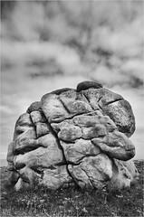 Saint Eden - Plouescat (Richard Giulielli) Tags: cerveau breton rocher bretagne plouescat