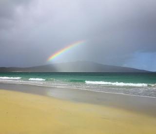 Rosamol Rainbow (iPhone)